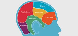 neurology-performance